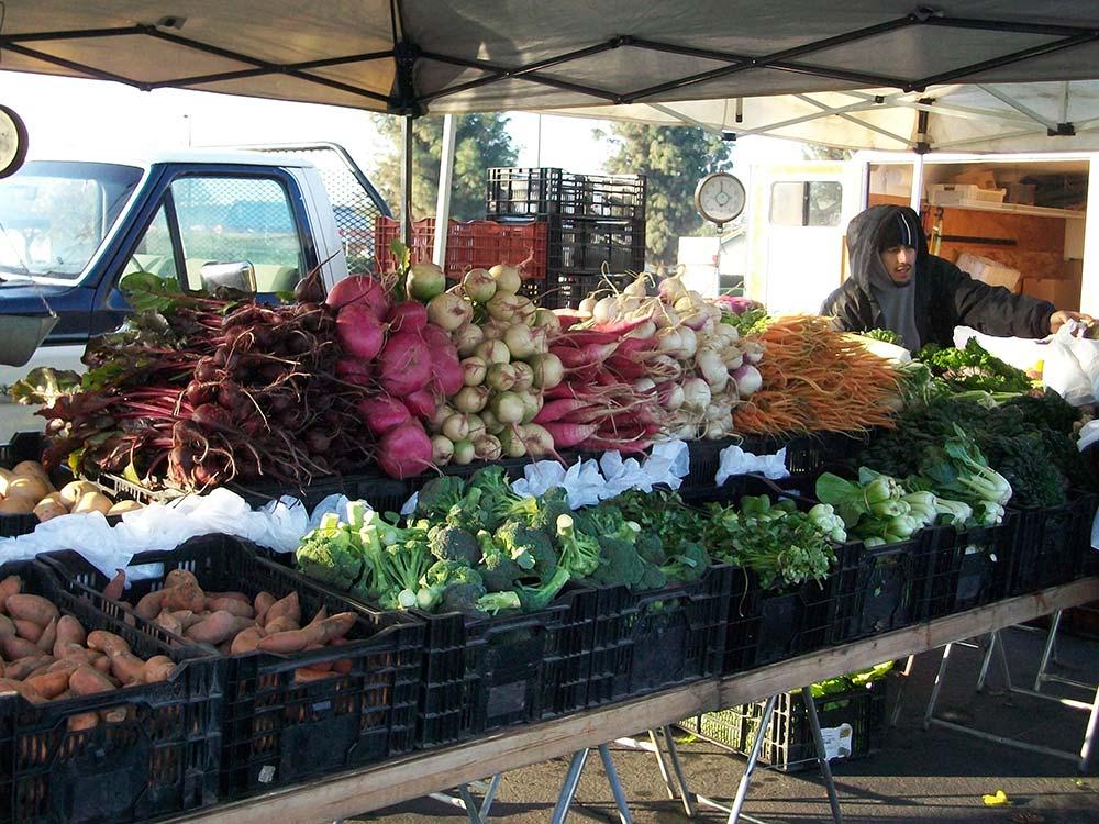 oak-run-visalia-farmers-market