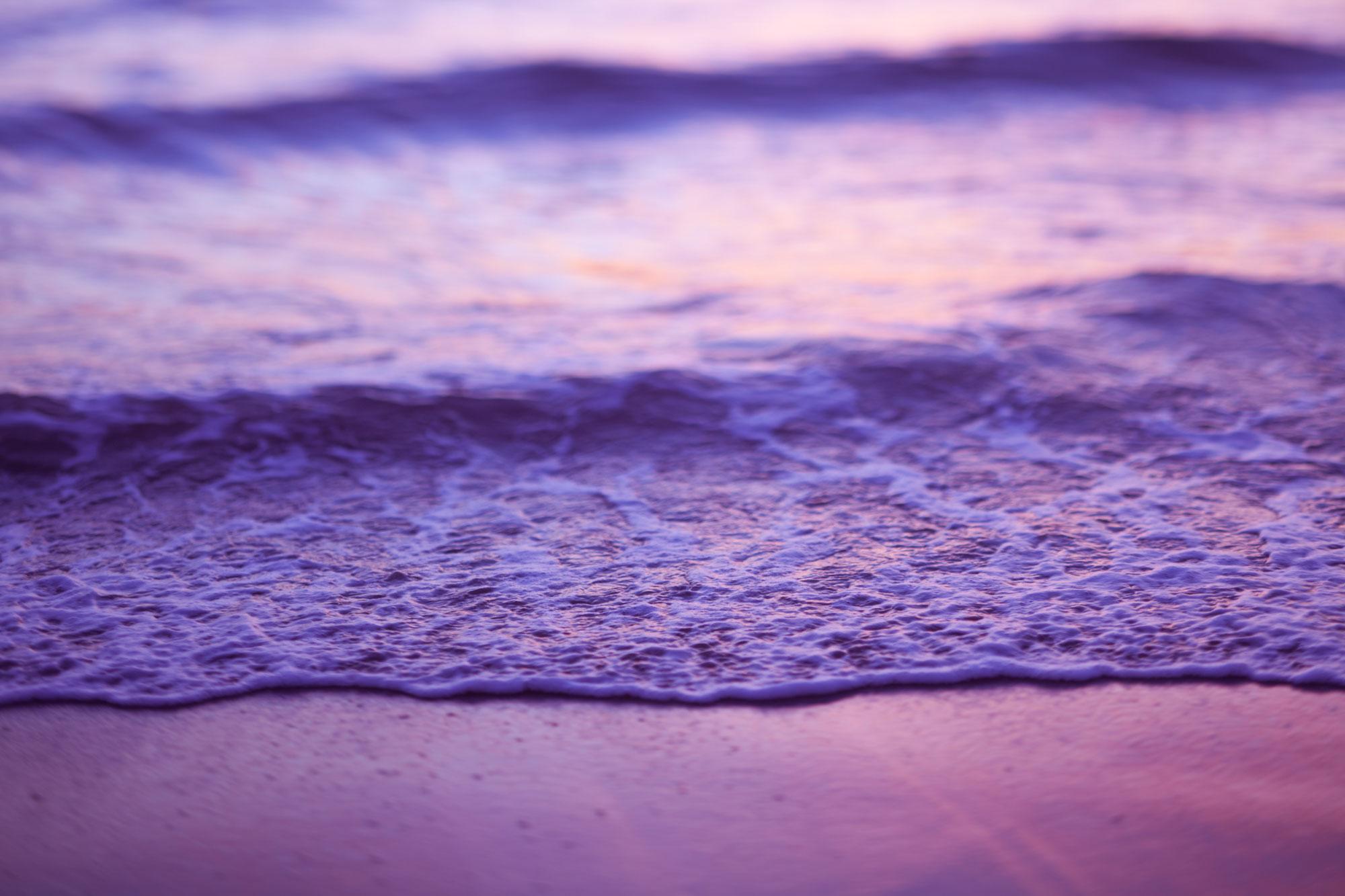 Villosa_Magenta_Ocean_Wave